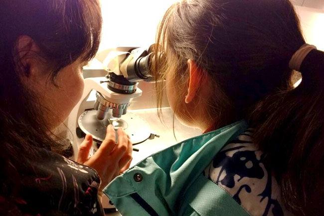 Semana de la Ciencia en la UNTDF